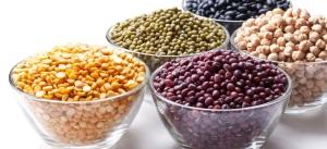 legumes-secs-alimentation