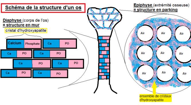 structure-os-schema